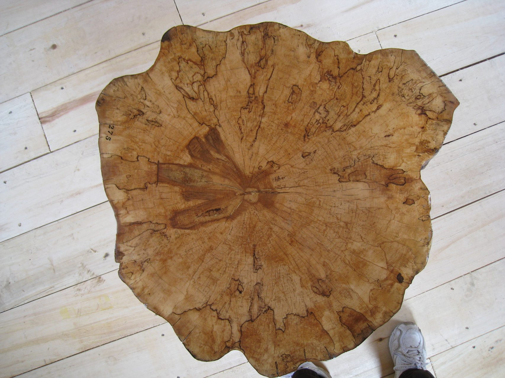 Rock maple top of coffee table